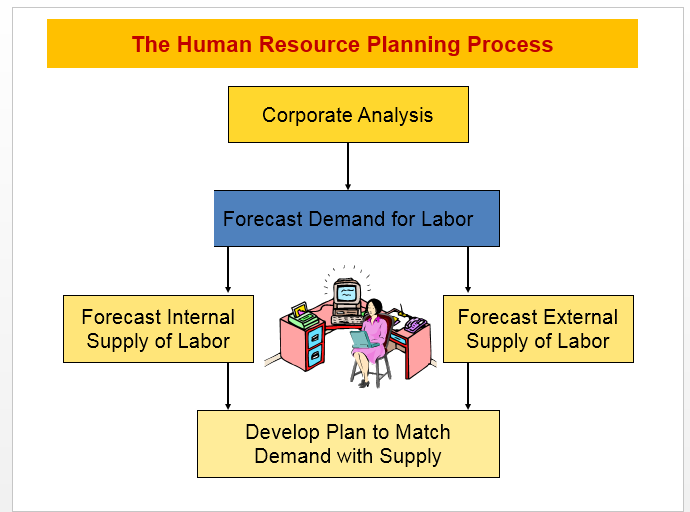 The Human Resource Planning Process